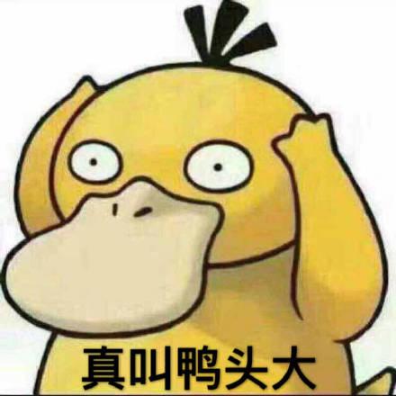 可达鸭表情包合集