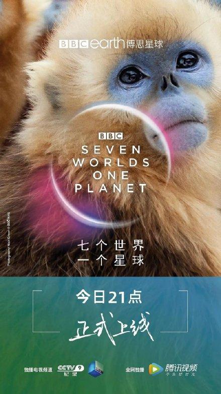 七个世界,一个星球(3/7)2019.HD720P 迅雷下载