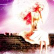 蔷薇十六夜--魅姬