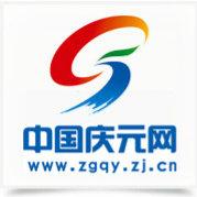 中国庆元网