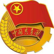 石林团县委