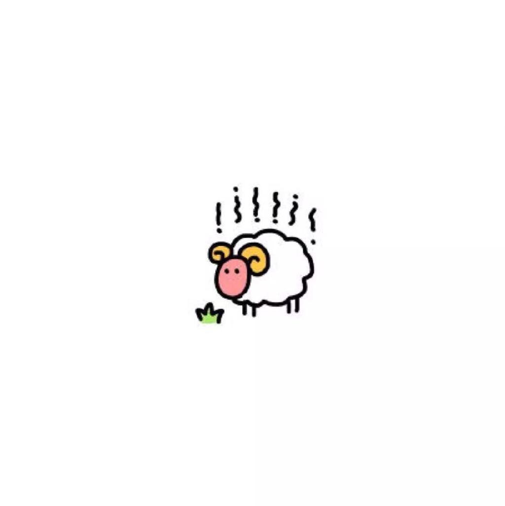 羊坨坨可爱的头像