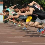 中国体育播报
