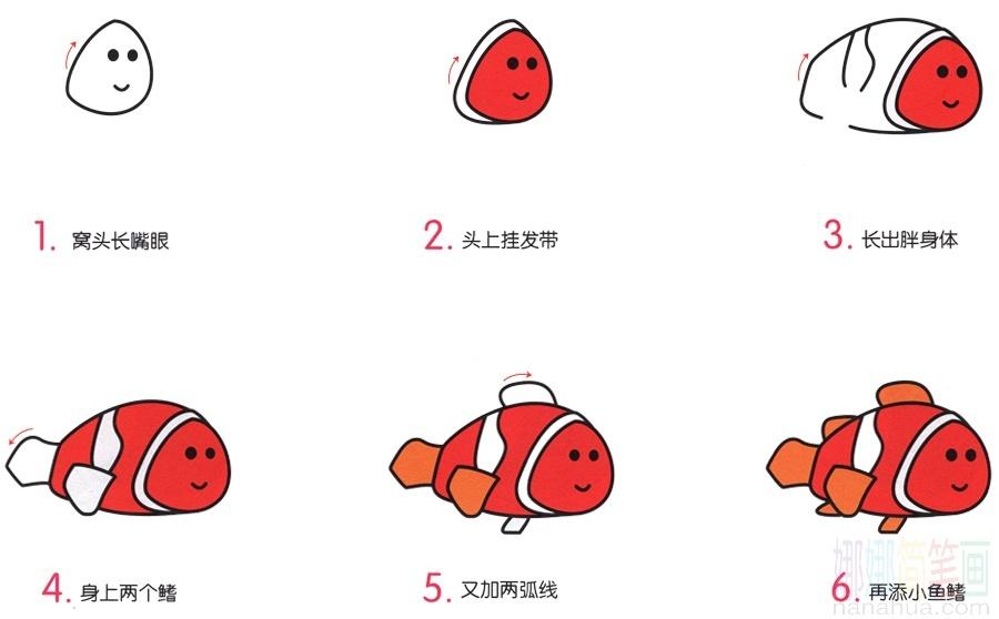 小丑魚_海洋魚紅色小丑魚 簡筆畫畫法_圖片 2