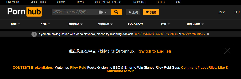 全球最大的大人站Pornhub支持中文了,再也不用翻译插件了!