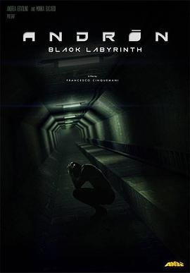 安德烈黑色的迷宫