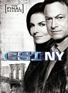 犯罪现场调查:纽约第九季