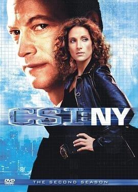 犯罪现场调查:纽约第二季
