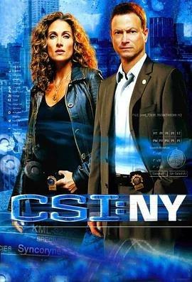 犯罪现场调查:纽约第四季