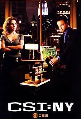 犯罪现场调查:纽约第五季