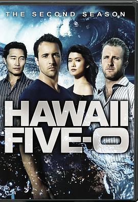 夏威夷特勤组第二季
