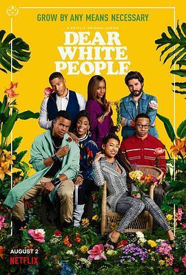 亲爱的白种人第三季
