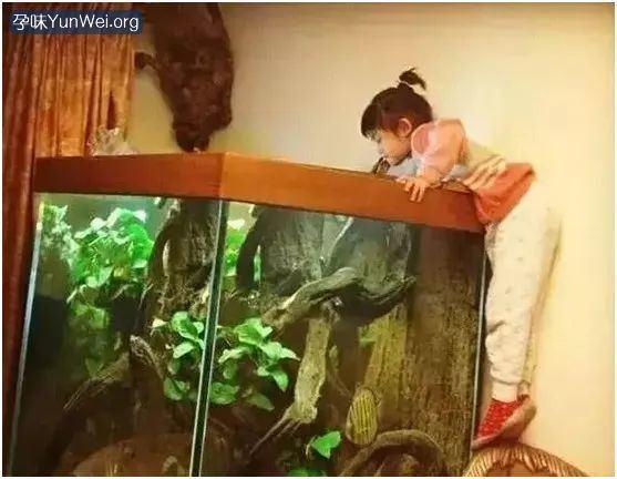 刘国梁女儿火了 要孩子成为什么样的人就要是怎样的父母8