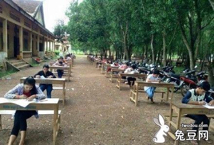 为防止抄袭老师在树林间考试还间隔3米