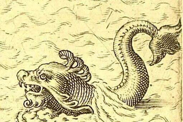 凡水下生物皆可成龙 揭秘鱼是怎么变成龙的
