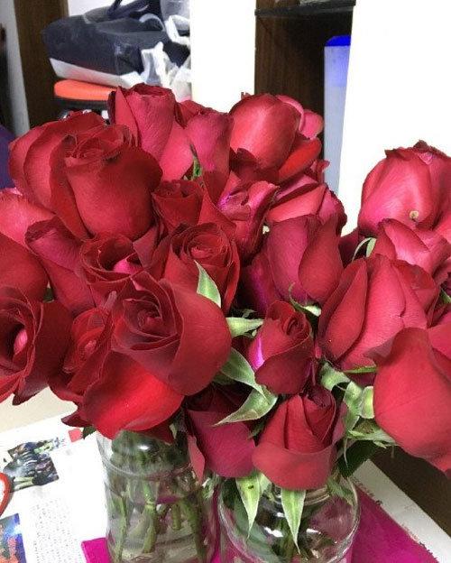 求婚玫瑰被炒成酱