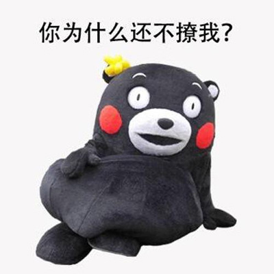 熊本熊你为什么还不撩我表情包