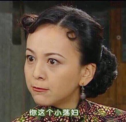 雪姨表情包:你这个小荡妇