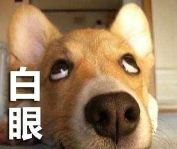 狗子翻白眼嫌弃表情包