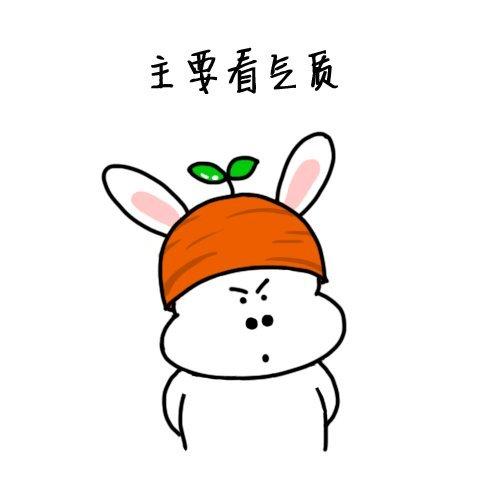 兔子骄傲表情包 主要看气质
