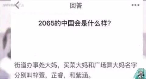 2065年的中国会是什么样