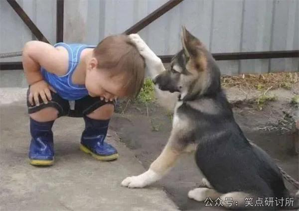 超温馨图片,狗狗摸小孩子头