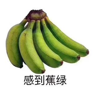 感到蕉绿表情包