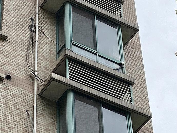 居民为报复邻居连开五年震楼器