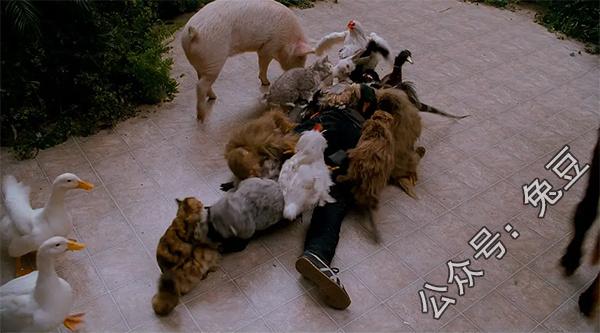 超级英雄男主被一群动物给轮了