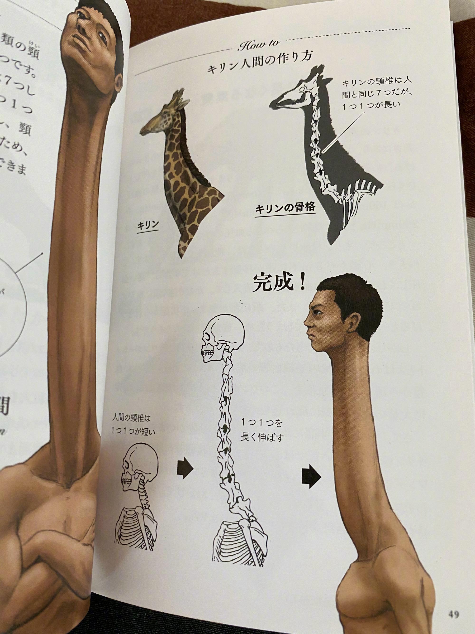 古生物画师川崎悟司的奇葩科普图鉴。