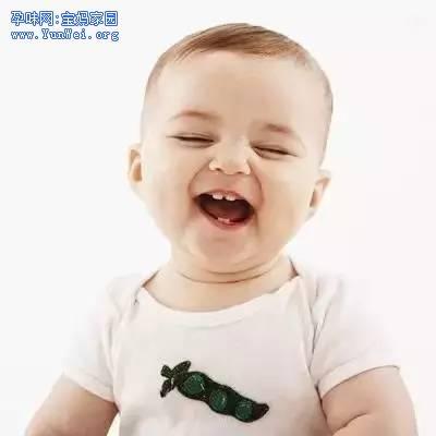 宝宝长牙的时候营养补充有哪些?