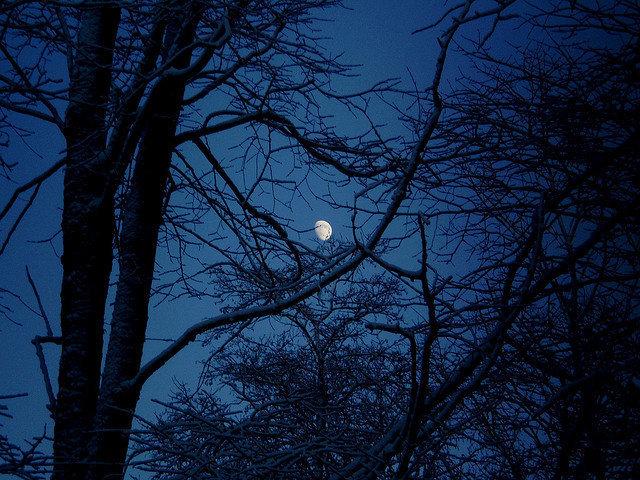 晚安心语心情文字0429:我太难了,感觉上辈子就是一道数学题