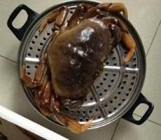 谁能借一个大点的蒸锅