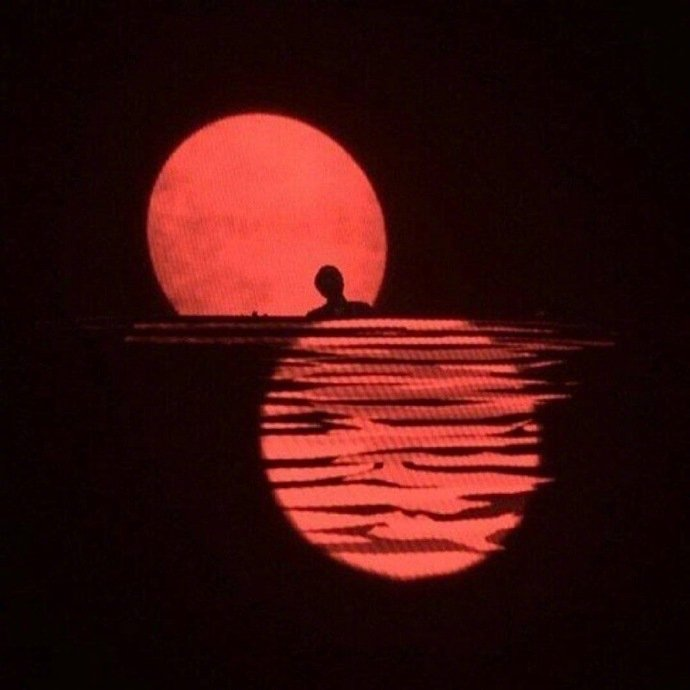 晚安心语191008:跟着风行走,就把孤独当自由