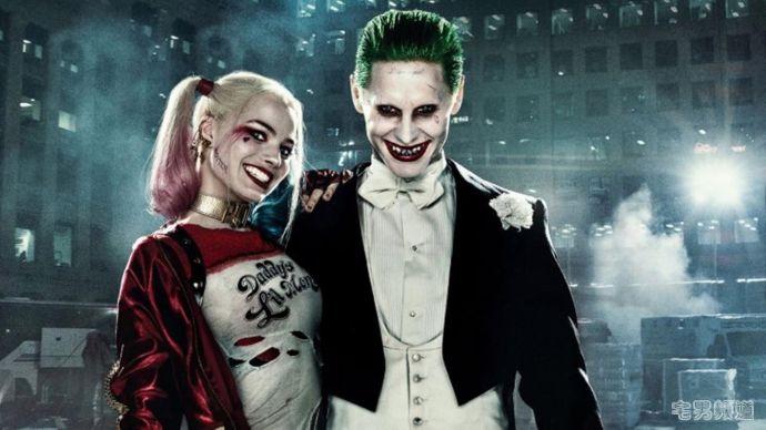 小丑女进展:《哥谭魅影》可能凉了,《猛禽小队》被提上日程