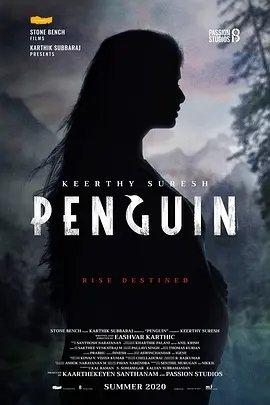 企鹅2020