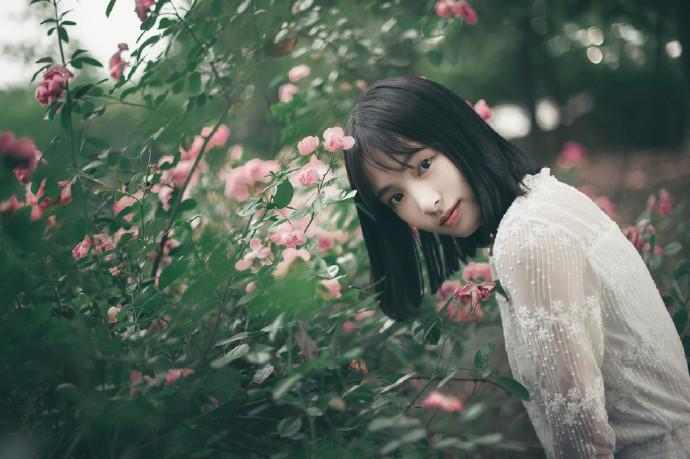 小清新妹子:Eglantine