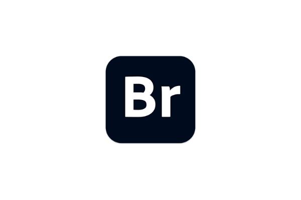 Adobe Bridge 2021 11.0 中文破解版多媒体文件组织管理工具BR