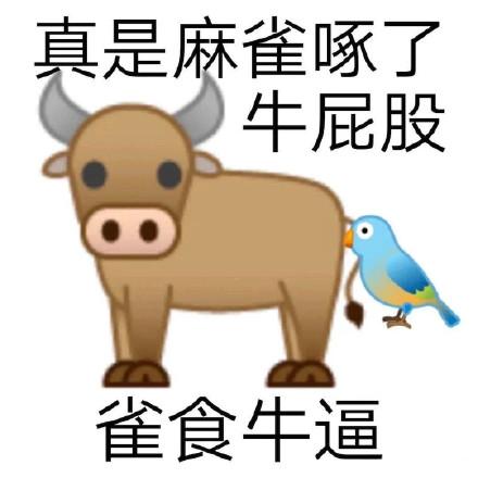 动物谐音梗歇后语骂人表情包