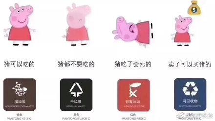 垃圾分类的猪定律