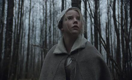 2015[悬疑/恐怖][女巫/The Witch]HD1280P 百度云高清下载图片 第2张