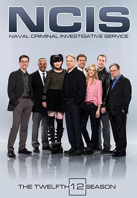 海军罪案调查处第十二季海报剧照