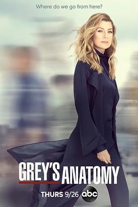 实习医生格蕾第十六季海报剧照