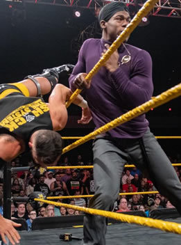 WWE-世界摔跤娱乐.2019