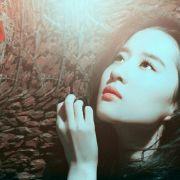 刘亦菲的女神范微博照片