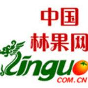 中国林果网
