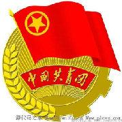 宝钢南方公司团委
