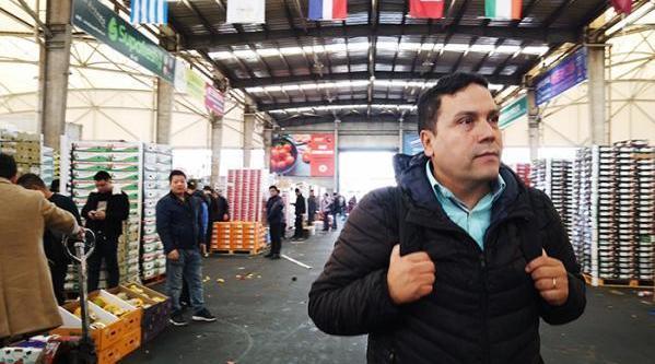 智利商人一周卖掉140吨车厘子数据:智利车厘子9成出口到中国