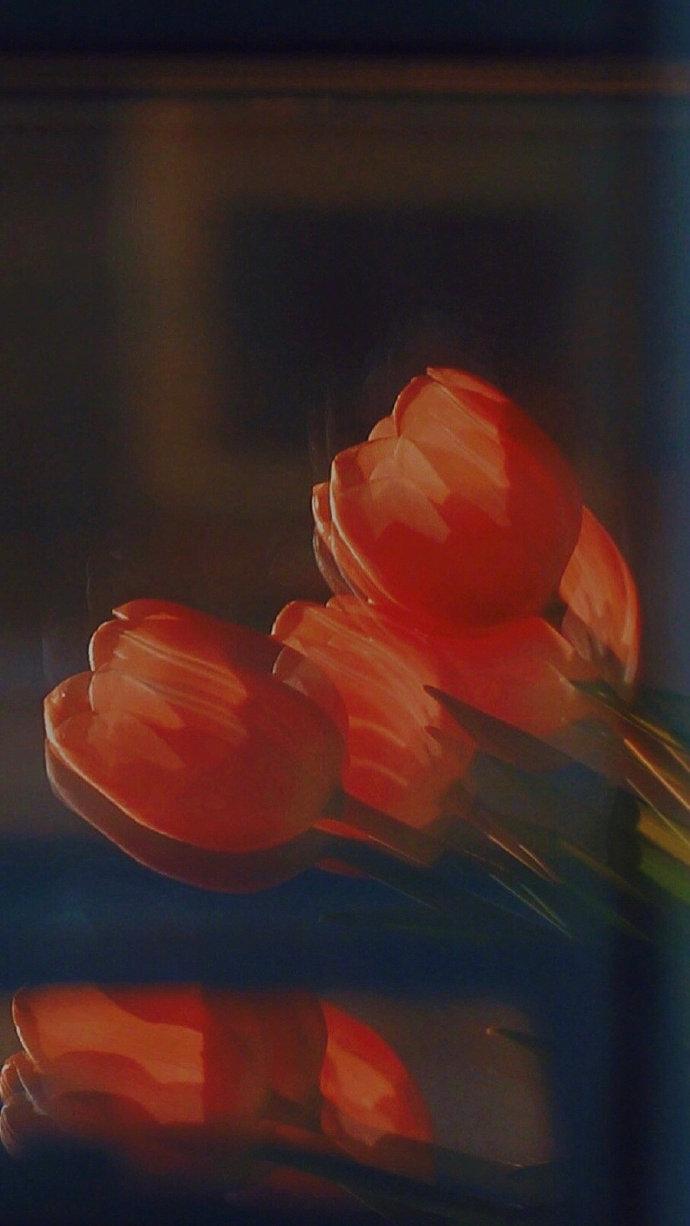 黄昏日落唯美图片,你不一定非要长成玫瑰