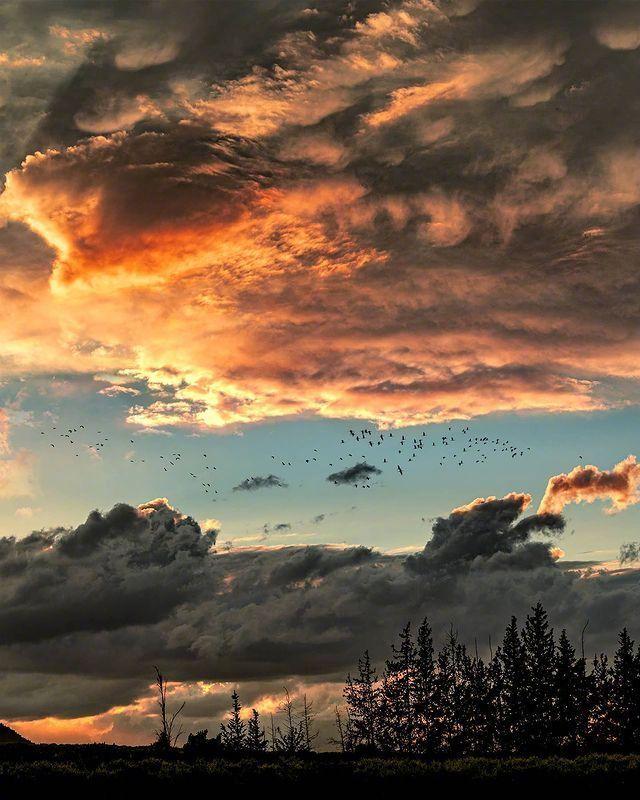 落日夕阳唯美图片,谢谢你有让我开心过。 
